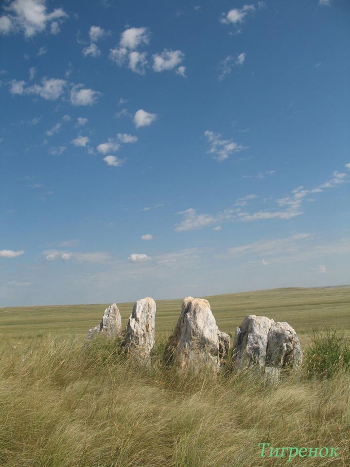 Оренбургский заповедник, участок Айтуарская степь